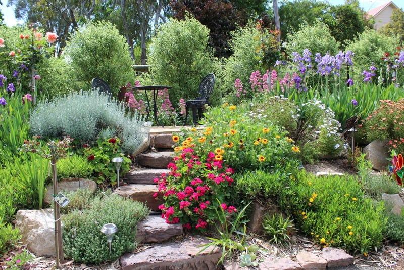 Bull-McCready Garden IMG_3682