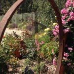 Norris Garden 2015