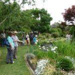 Steward garden 2014