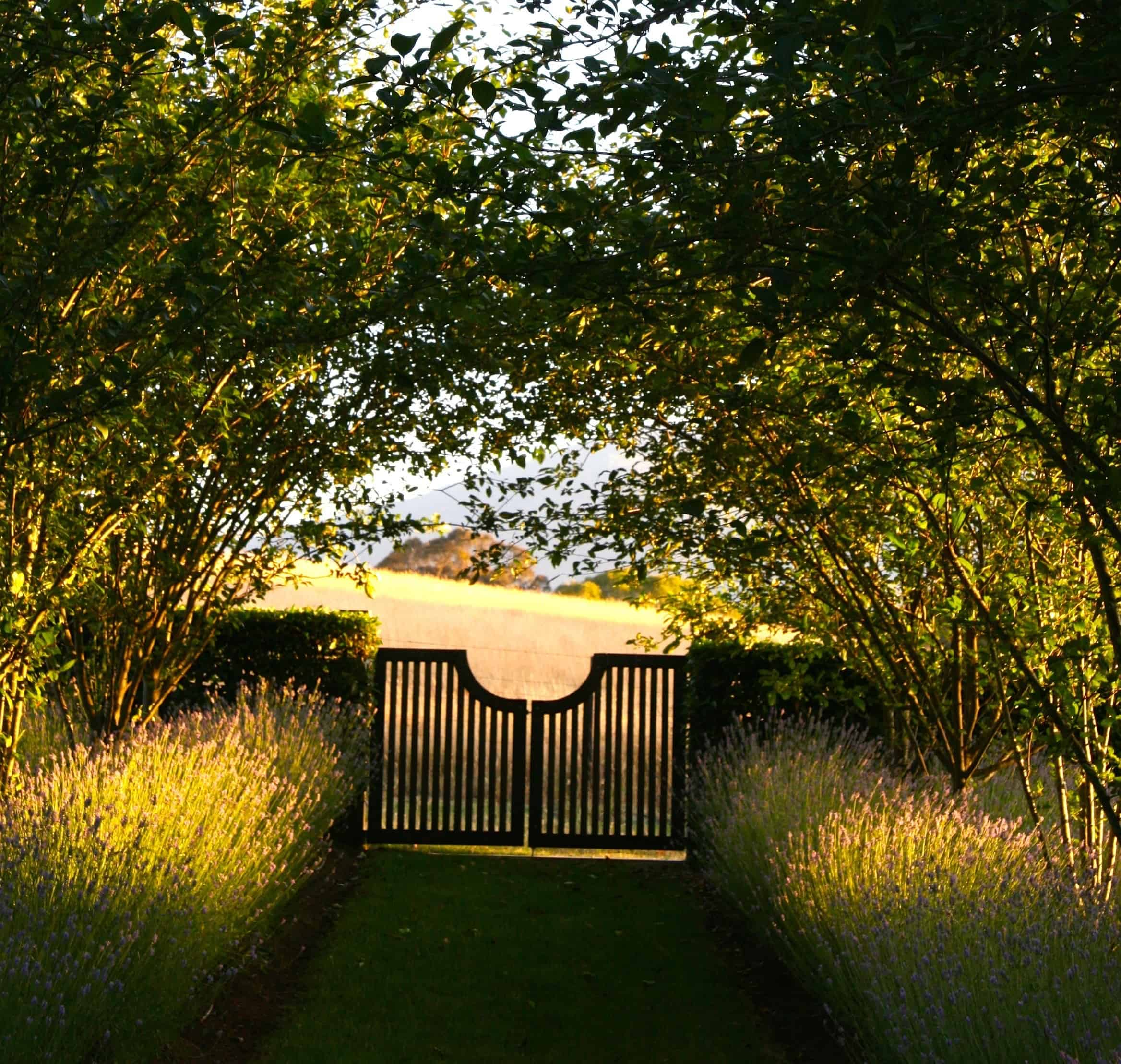 Sonya & David Evans - 'Attunga Farm' Thornton (Garden Designed by Paul Bangay)